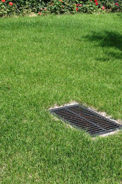 下凹式绿地